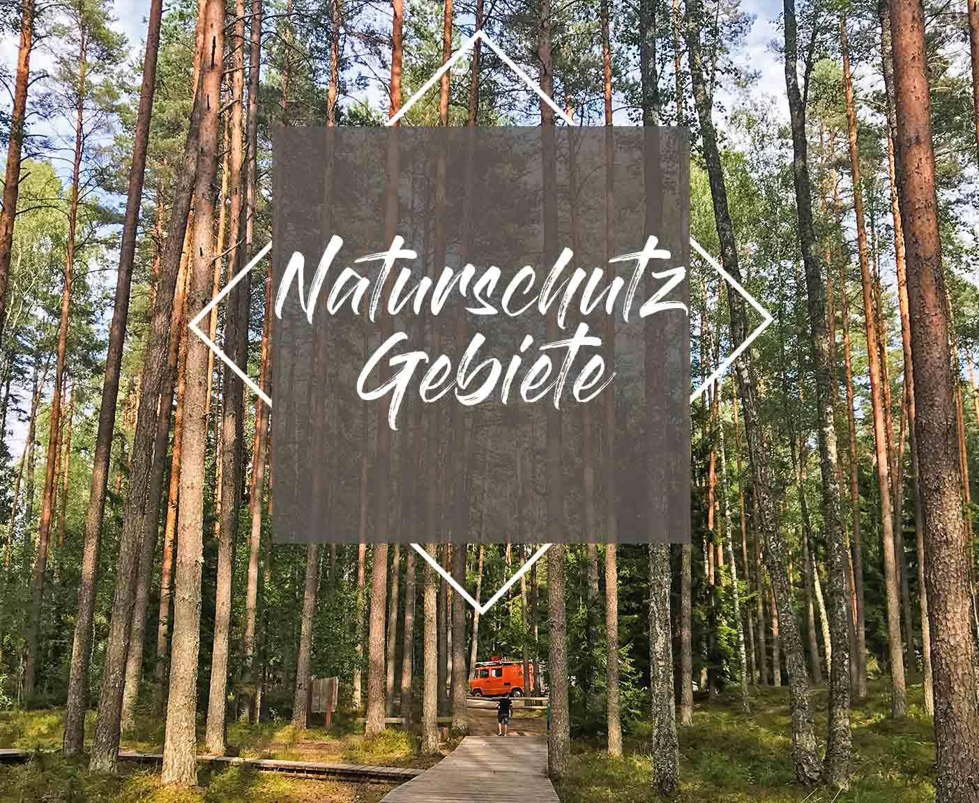 naturschutzpark-lettland-reise