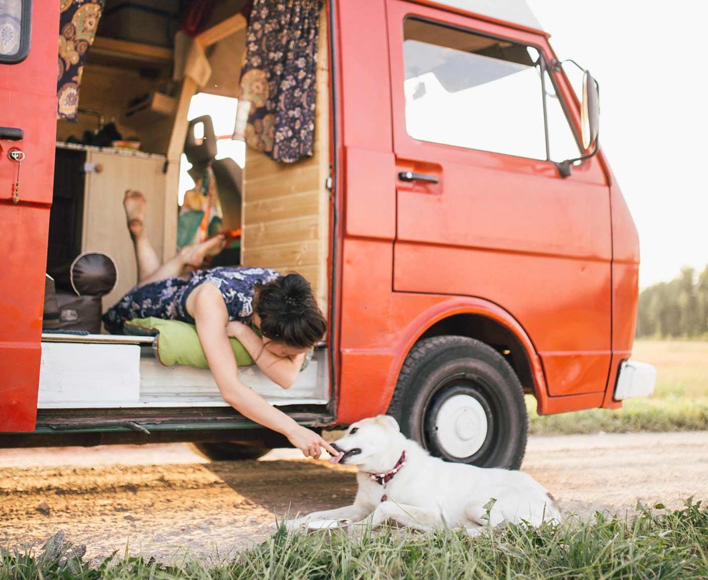 hund-im-wohnmobil-reisen-vw-lt-28-wohnmobil