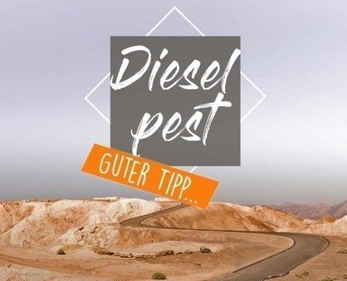 dieselpest-additive-vorbeugung-produkte-bakterien-tank