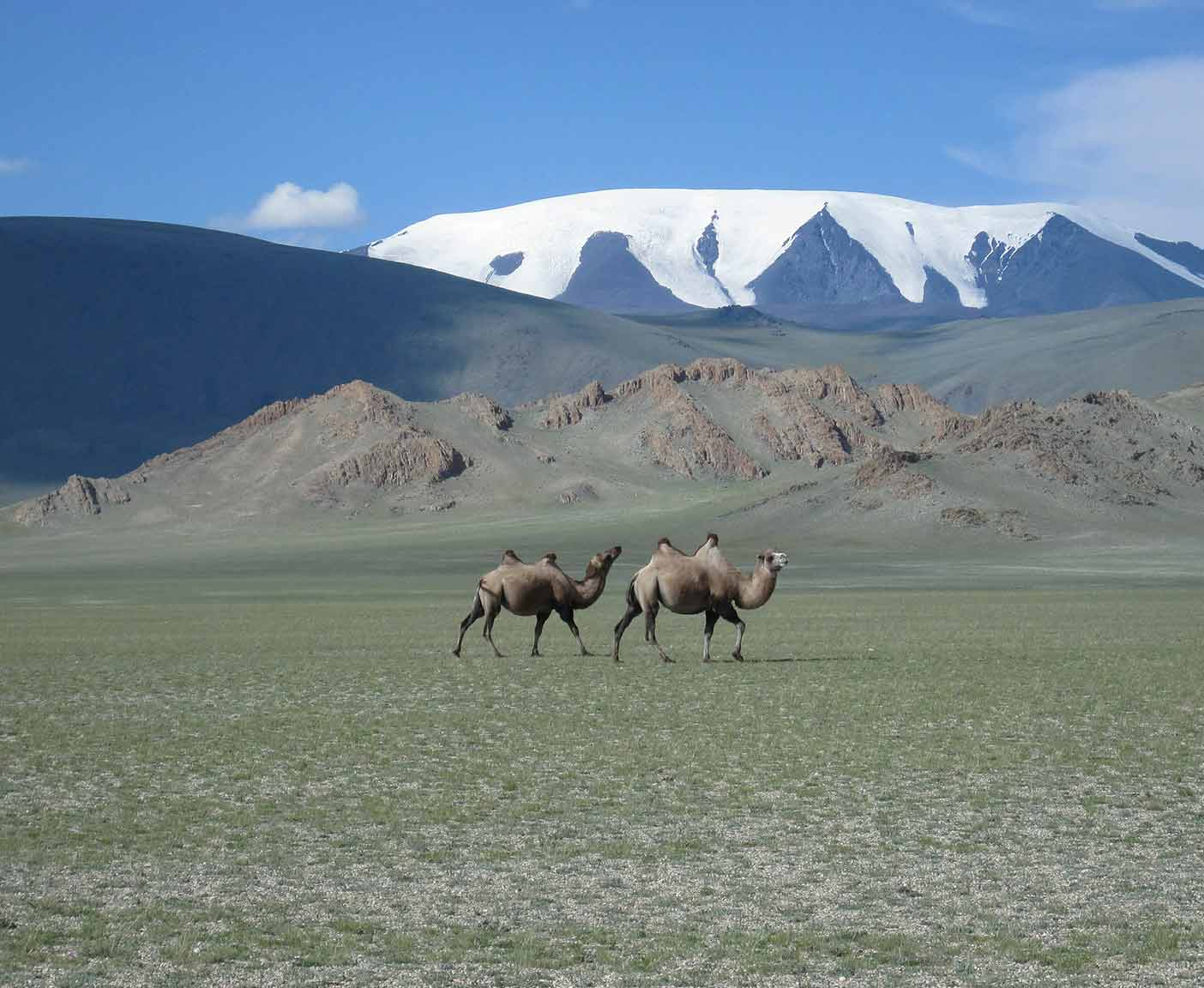 Mongolei-visum-visa-urlaub-china-russland-japan