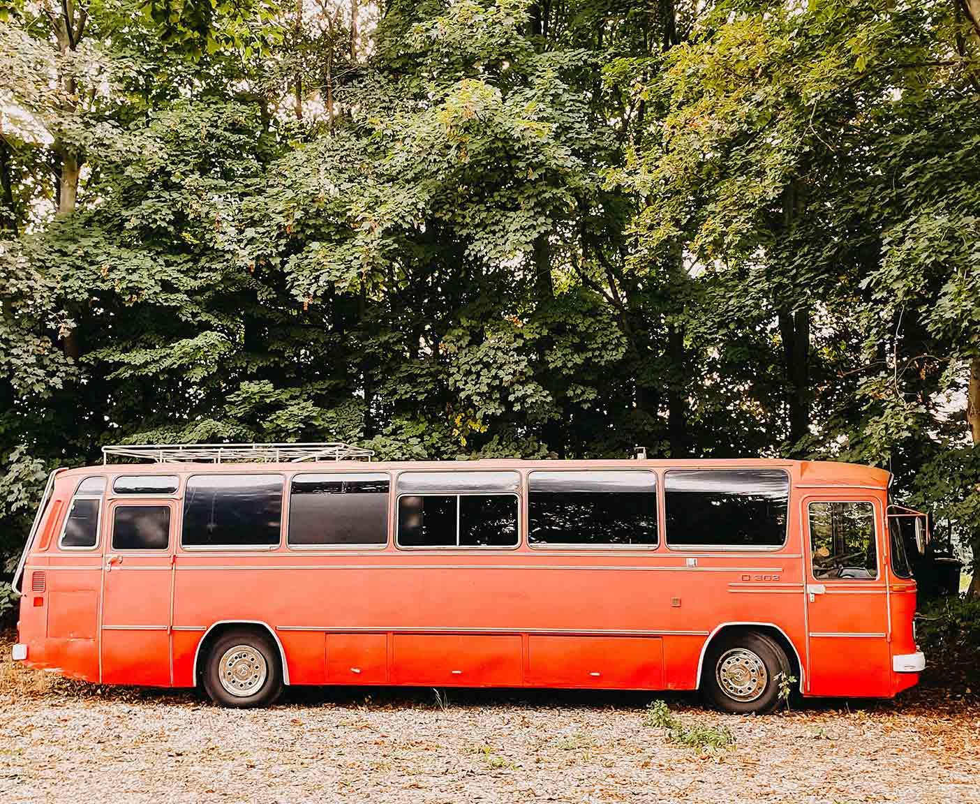 Mercedes-Benz-O302-kaufen-wiki-bus