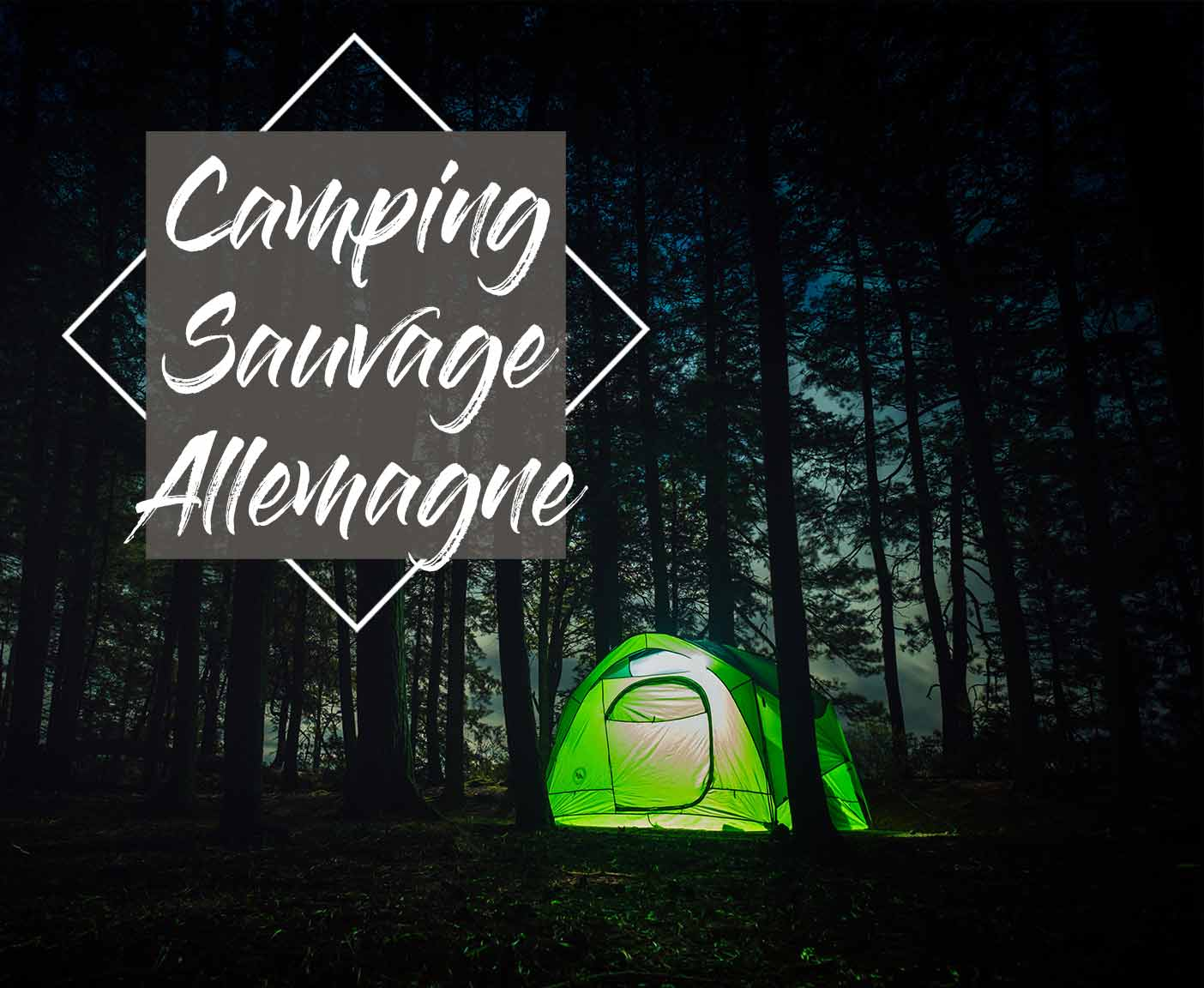 camping-sauvage-regles-allemagne-roadtrip-vanlife-europe
